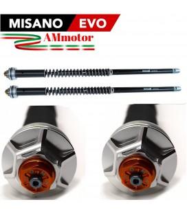 Kawasaki W 650 Cartuccia Forcella Andreani Misano Evo Regolabile Idraulica