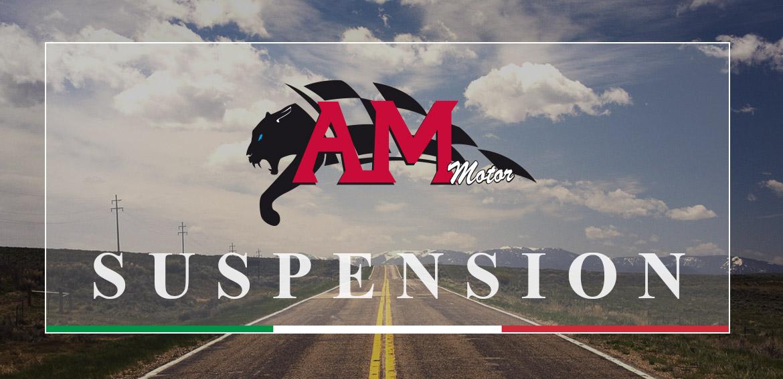 am-motor2